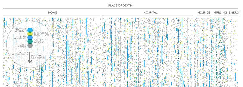 Close up of visualization showing patients arrayed by place of death.